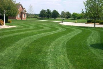Lawn CountryMax.com